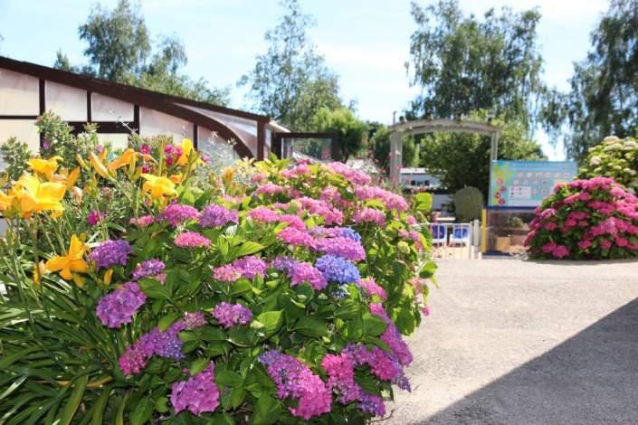Allées fleuries du camping la Piscine